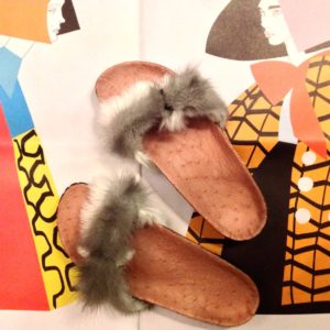 Brkfurry Ostrich